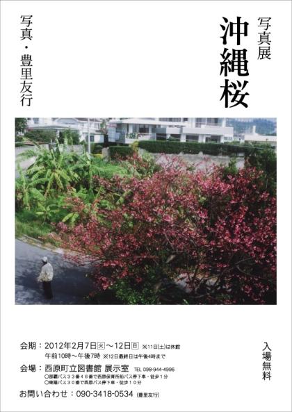 toyozato_okinawasakura_tirashi.jpg