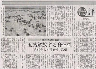 小橋川展評.jpg